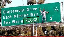 Steve-O -- Cops Want Him Prosecuted for SeaWorld Stunt