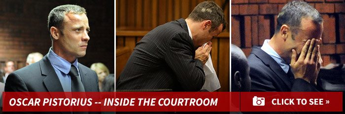 0310-oscar-pistorius-courtroom-footer-1