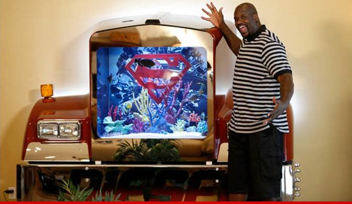 Shaquille o 39 neal even my fish are diesel shows off for Fish tank show