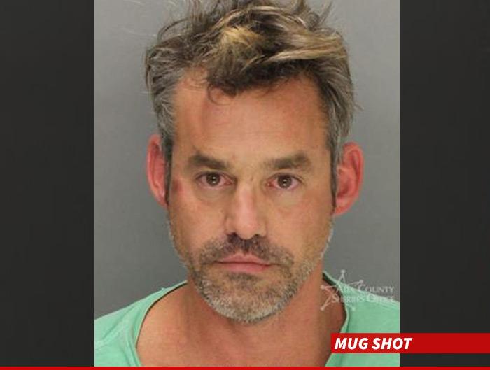 Nicholas Brendon Arrest
