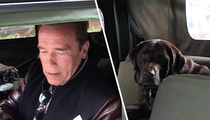 Arnold Schwarzenegger -- Some Tails Just Gotta Be Told