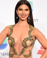 Roselyn Sanchez Goes Nearly Naked at Latin Grammy Awards
