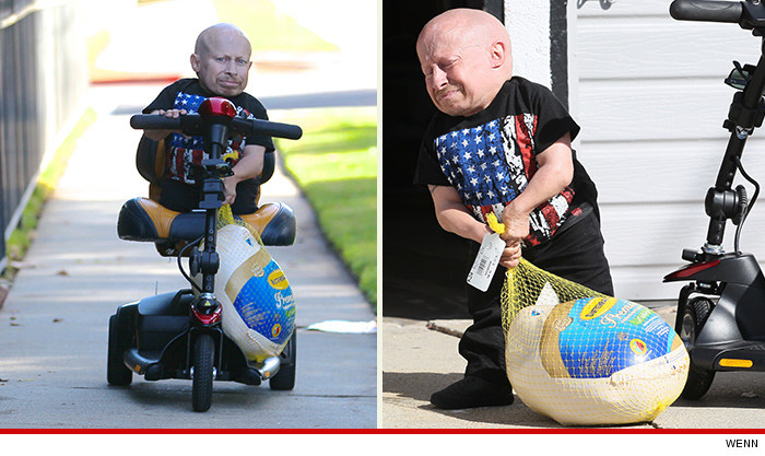 1125-verne-troyer-turkey-sbs-wenn-01