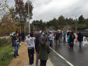 Paul Walker Fans Pay Tribute at Crash Site