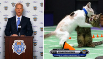 Boomer Esiason -- Oversees Kitten Bowl Draft ... Ryan Fitzcatrick Falls to #3