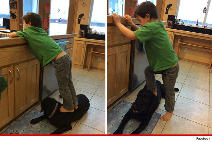 0102-sbs-palin-son-on-dog-facebook-01