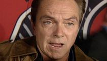 David Cassidy -- Man in the Middle of Drunken Cat Fight