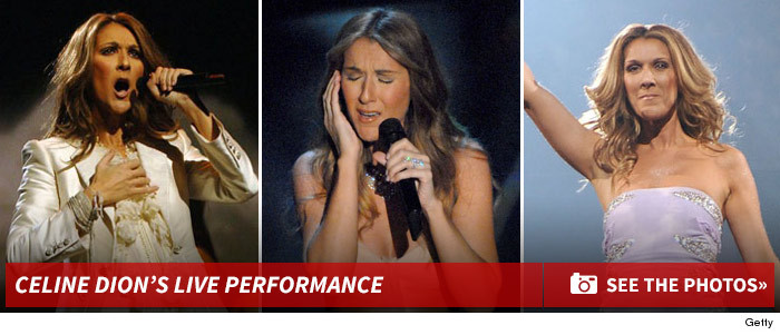 0112_celine_dion_performance_footer