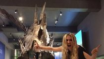 Kesha -- Natural History Museum Grouses ... You Glittered Our Dino!