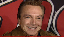 David Cassidy -- C'mon Get Happy ... I'm Rehabilitated!