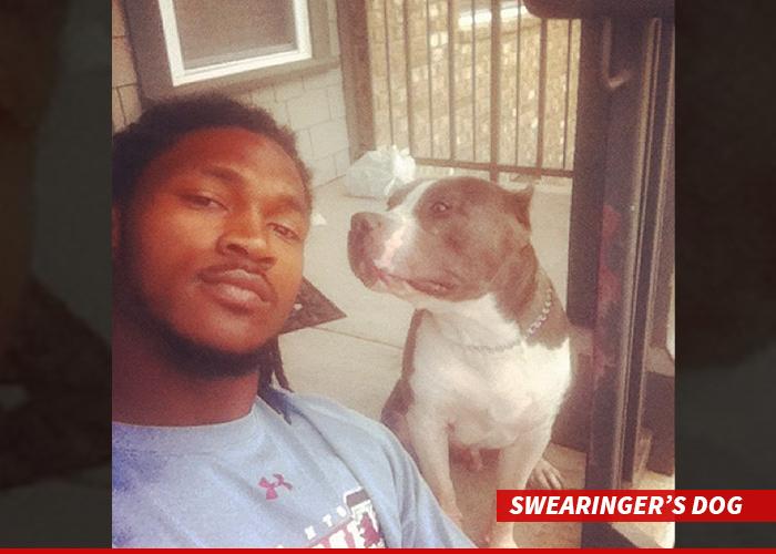 0310-swearingers-dog-instagram-01