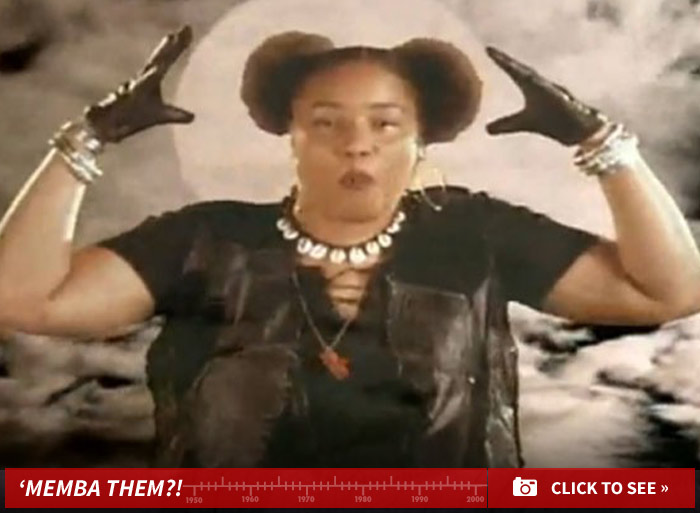 0331_the_lady_of_rage_afro_puffs_now_launch