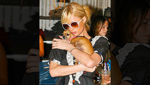 Paris Hilton -- Tinkerbell Dies ... O.G. Purse Doggy Was 72