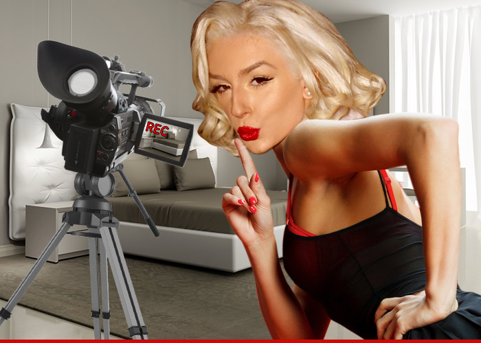 0427-courtney-stodden-porn-fun-art-TMZ-01