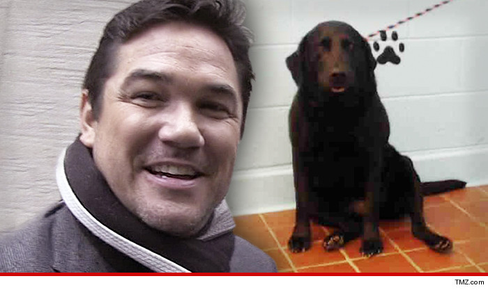 dean cain dog gone astray saves pooch from animal pokey tmz