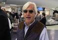 Bob Baffert -- American Pharoah's Gonna Get Sooo Laid!!!