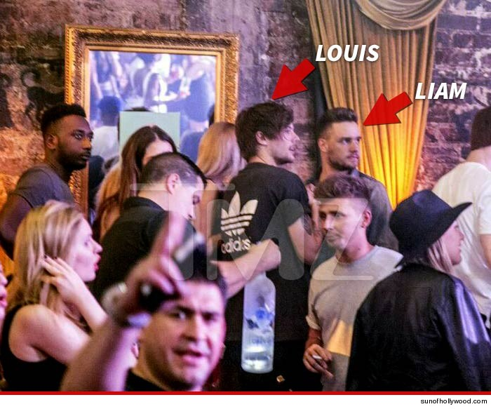 0512-one-direction-tmz