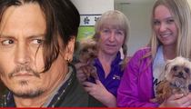 Johnny Depp -- Dog Smuggling Carries 10 Year Prison Sentence