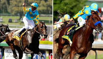 American Pharoah -- My Dad's Sperm Is Hotter Than Ever!