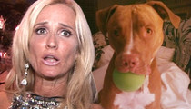 Kim Richards -- Dogged with ANOTHER Lawsuit Over Pitbull