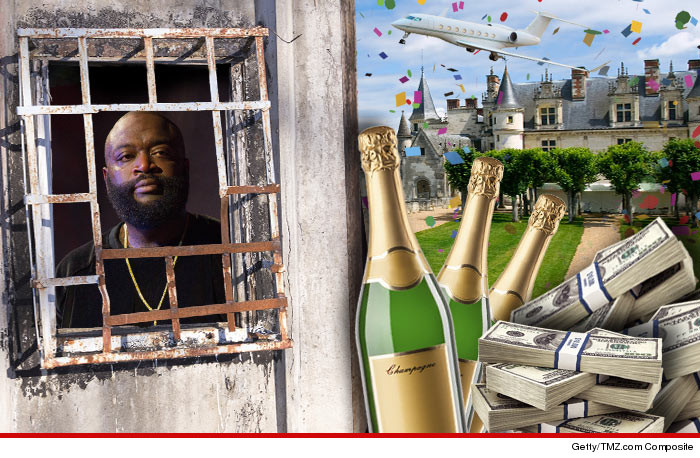 0625-rick-ross-party-jail-missing-out-fun-art-01