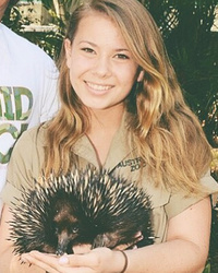 Bindi Irwin Gushes About 'Special' Guy in Her Life