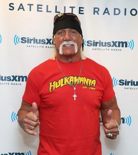 HULKAMANIA Hulk Hogan Wrestling