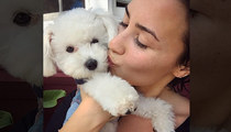 Demi Lovato -- Dog Mauled to Death by Coyote