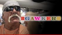Hulk Hogan: Gawker Leaked N-Word Story ... They Should Be Jailed
