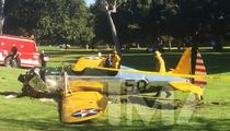 Harrison Ford Crash -- Wasn't His Fault ... Troublesome Part to Blame