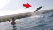 Back Flipper -- Dolphin Puts On A Show For Divers (VIDEO)