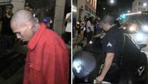 Chris Brown -- In Trouble with Law for NOT Seeing Red (VIDEO)
