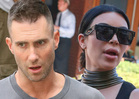 TMZ's Top Celeb Slapstick Moments