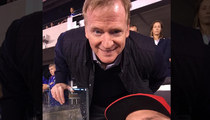 Roger Goodell -- Hey Commish ... Can I Get a Selfie?!
