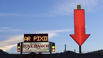 Lamar Odom -- Business Booming at Love Ranch Brothel