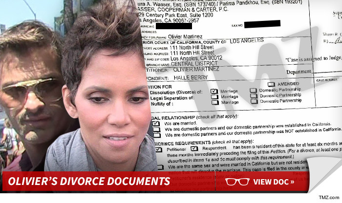 Halle Berry divorce documents