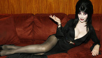 30 Scary Hot Photos Of Elvira for a Heart Pounding #WCW!
