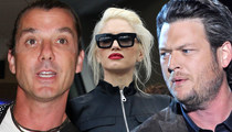 Gavin Rossdale -- 'Suspicious' Over Gwen/Blake Relationship