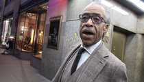 Al Sharpton -- Ray Rice Got Screwed ... No Equal Justice In NFL (VIDEO)