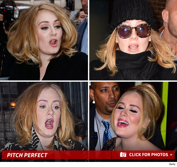 adele signing faces