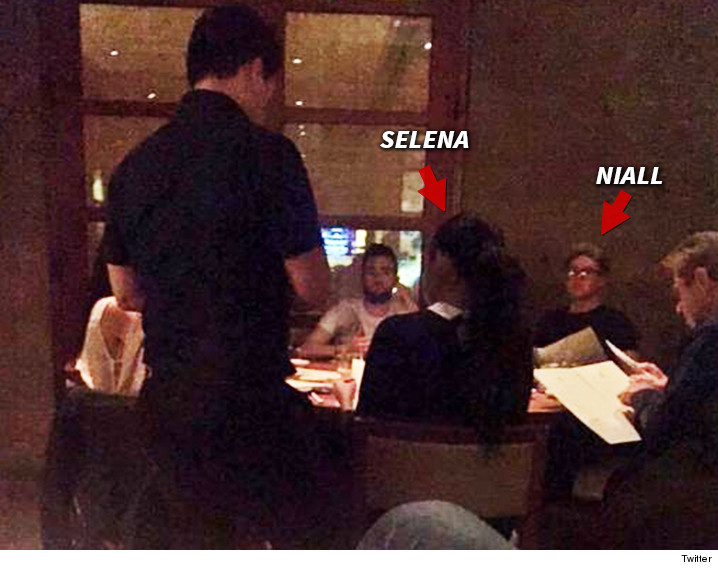 Selena Gomez And Niall Horan Dating selena gomez & one direction's ...