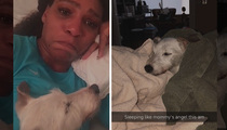 Serena Williams -- My Dog Is Dying ... And It's Breaking My Heart (Update)