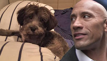 Dwayne 'The Rock' Johnson Helps Save 'The Rock' ... Doggie Version