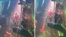 Britney Spears -- HELP!!! I'M STUCK TO A TREE
