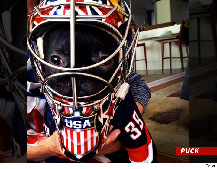 0108_ryan_miller_dog_puck_twitter