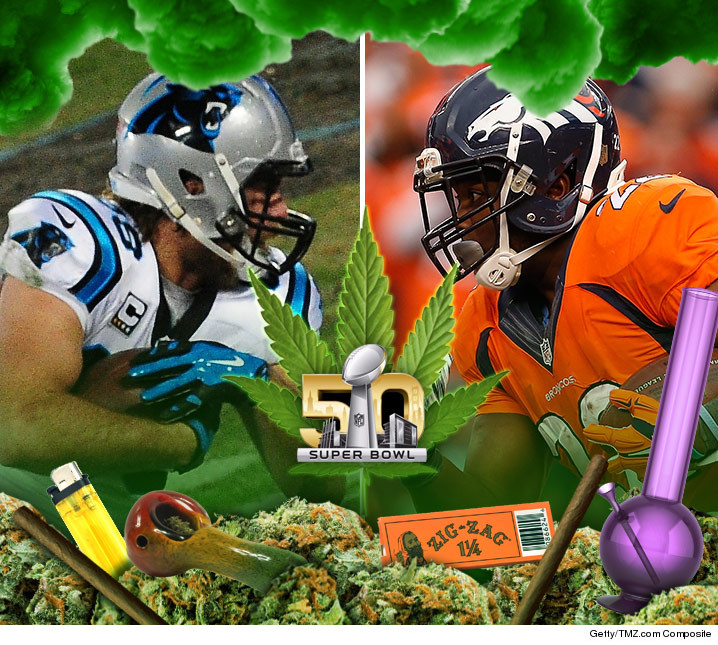 0205-superbowl-weed-fun-art-01