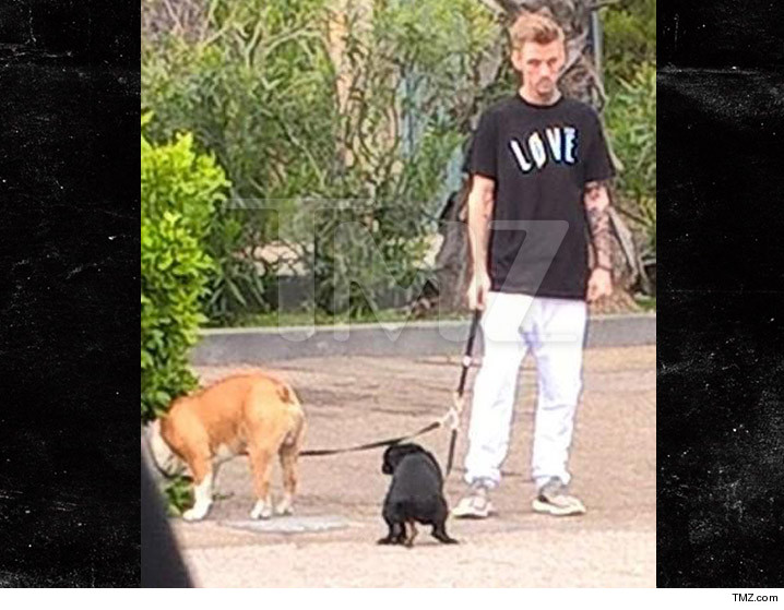 0309_aaron-carter_dogs-tmz-wm