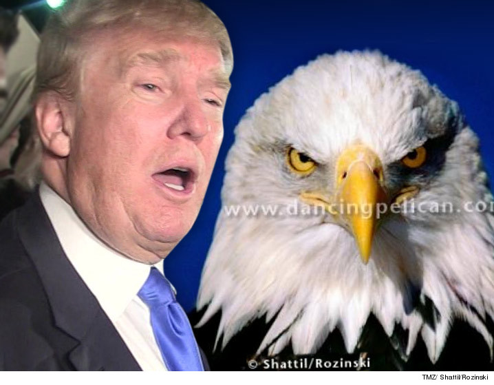 0324-donald-trump-eagle-sued-TMZ-SHATIL-ROZINSKI-01