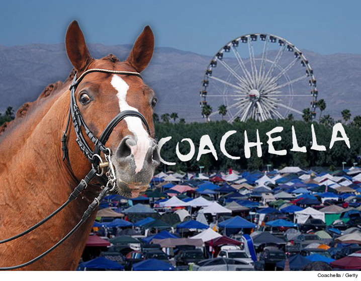 040116-horse-coachella-getty