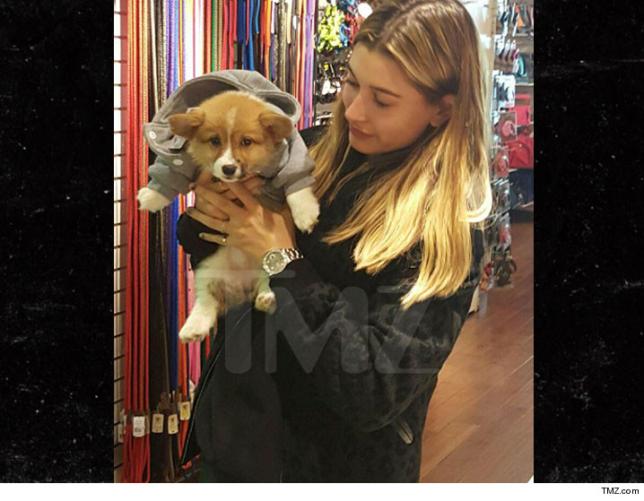0403-hailey-baldwin-new-puppy-TMZ-01